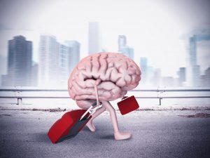 Is our brain becoming more sophisticated or deteriorating in the digital world?
